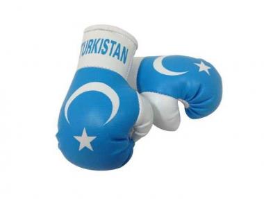 Turkistan Mini Boxhandschuhe