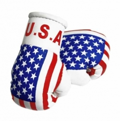 USA Mini Boxhandschuhe