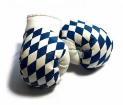 Bayern Mini Boxhandschuhe
