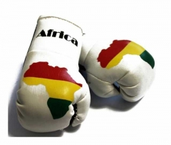 Africa Mini Boxing Gloves