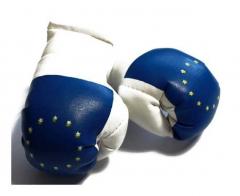 Europa Mini Boxhandschuhe