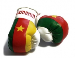 Cameroons Mini Boxing Gloves