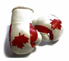 Canada Mini Boxing Gloves
