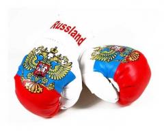 Russia Mini Boxing Gloves