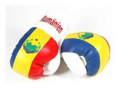 Rumänien Mini Boxhandschuhe