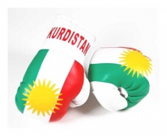 Kurdistan Mini Boxing Gloves
