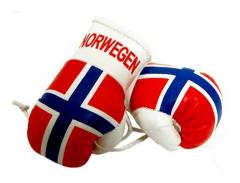 Norwegen Mini Boxhandschuhe