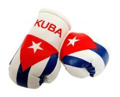 Cuba Mini Boxing Gloves