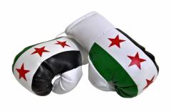 Syrien Mini Boxhandschuhe