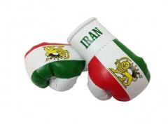 Iran Mini Boxhandschuhe