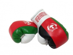 Afghanistan Mini Boxhandschuhe