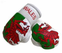 Wales Mini Boxhandschuhe