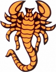 Aufkleber Orange scorpion