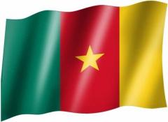 Kamerun - Fahne