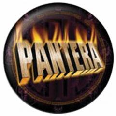 Anstecker Pantera