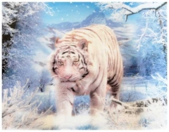3D Poster Hunting White Tiger