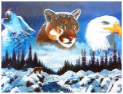 3D Poster Wild Life