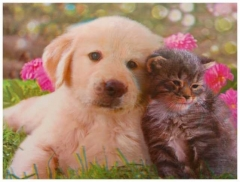 3D Poster Cat and Dog Friends Forever
