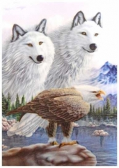 3D Poster Wolves and Eagle