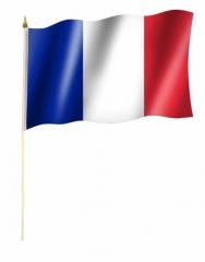 Frankreich Stockfahnen