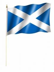 Stockfahnen Schottland
