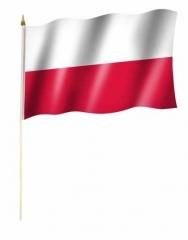 Polen Stockfahnen