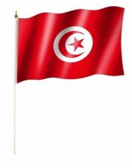 Tunesien Stockfahnen