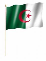 Algerien - Stockfahne