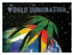 Posterfahne World Domination